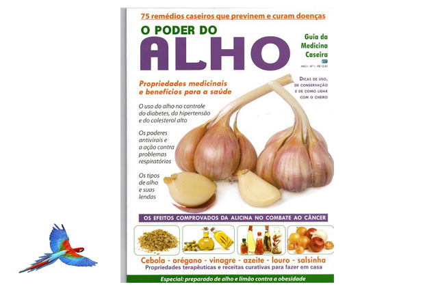 Garlic Natural Health Food picture cover of magazine